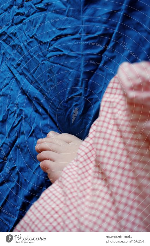 Blue White Red Calm Relaxation Dream Feet Bright Contentment Lie Natural Sleep Warm-heartedness Bed Wrinkles Bedclothes