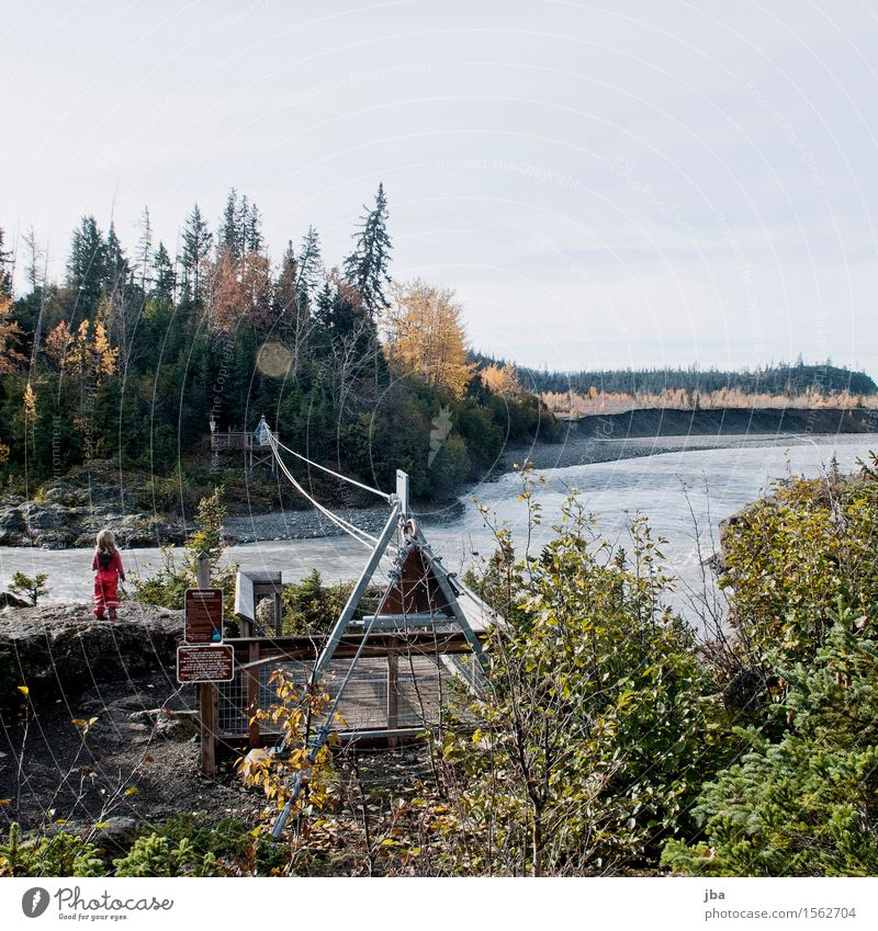 Brook crossing in Alaska - Alaska 29 Fitness Life Vacation & Travel Trip Far-off places Freedom Summer Hiking Girl 1 - 3 years Toddler Nature Water Autumn