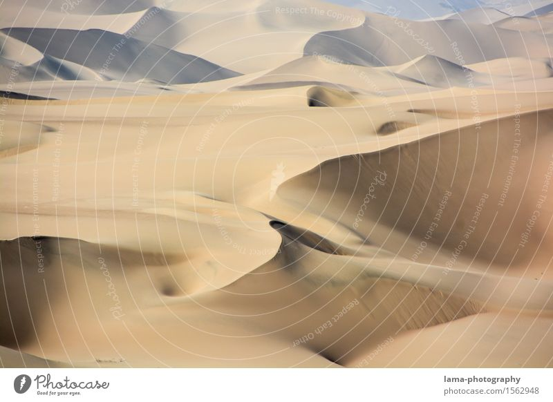 Vacation & Travel Landscape Far-off places Sand Adventure Desert Dune Summer vacation Africa South America Sahara Peru