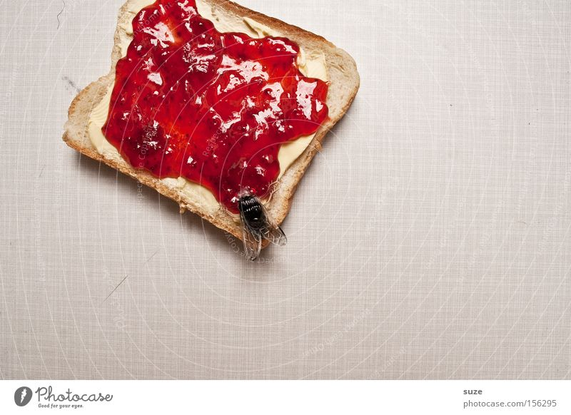 mampfff ... smacking Food Bread Jam Nutrition Breakfast Organic produce Vegetarian diet Fasting Table Kitchen Fly Decoration Plastic Delicious Funny Sweet Toast