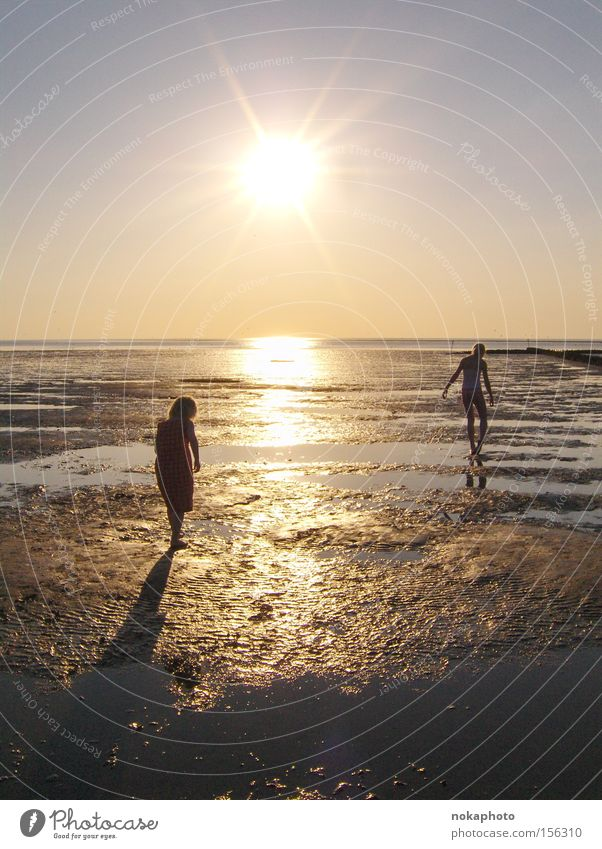 Evening mood in the mud flats North Sea Mud flats Sunset Dusk Freedom Relaxation Low tide Summer Ocean Calm Vacation & Travel Exterior shot