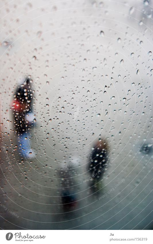 Human being Water To talk Group Rain Drops of water Wet Communicate Freeze Damp Comfortless
