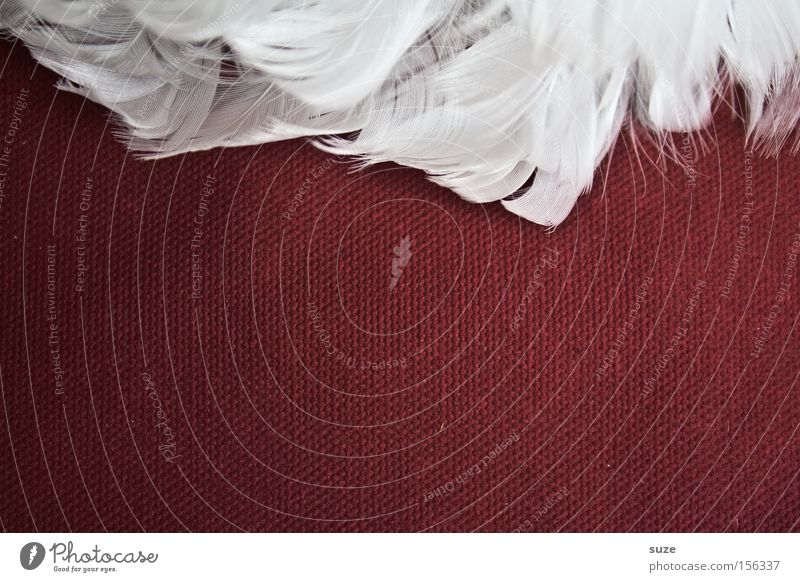 White Red Style Decoration Lifestyle Feather Wing Cloth Soft Angel Delicate Easy Ease Smooth Section of image Partially visible