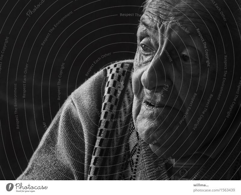 the narrative master - portrait of the elderly Senior citizen Male senior age Portrait photograph Face Retirement Man Grandfather Old Communicate