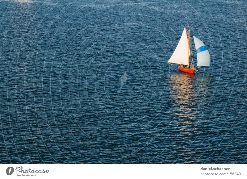 sail away with me honey Water Ocean Sailing Sailing ship Waves Wanderlust Blue Watercraft White Aquatics