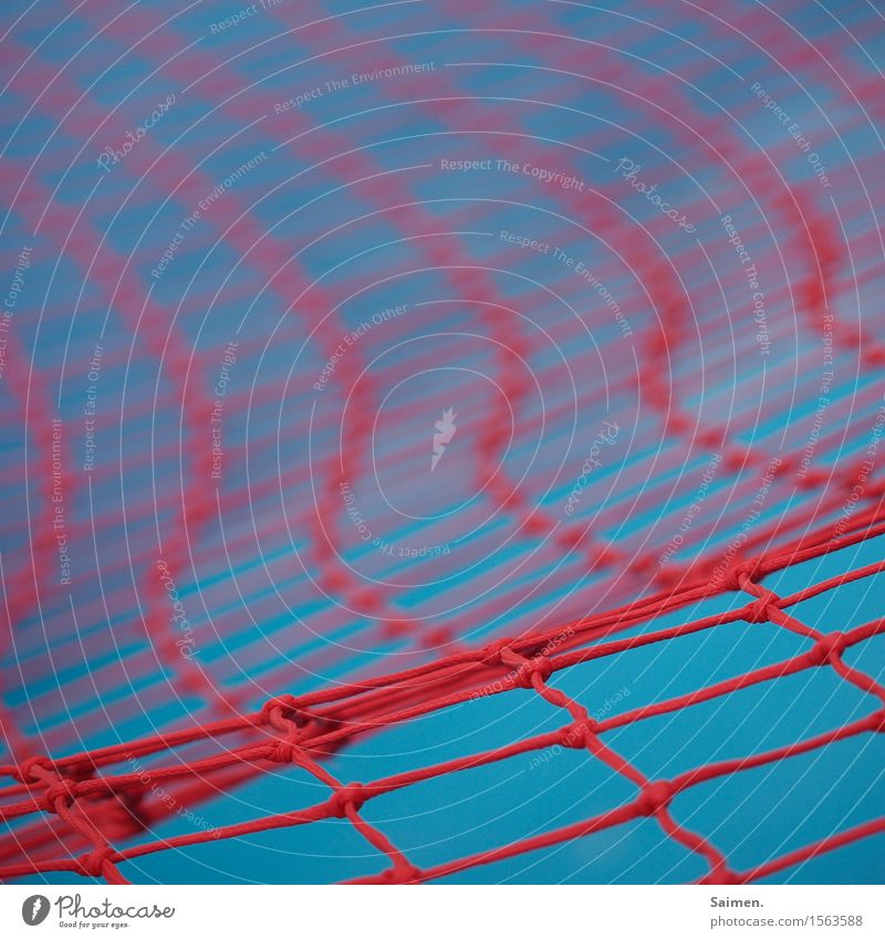 Network Line Blue Red Structures and shapes Wavy line knotted Knot Hold Pattern Colour photo Multicoloured Exterior shot Close-up Detail Deserted Copy Space top
