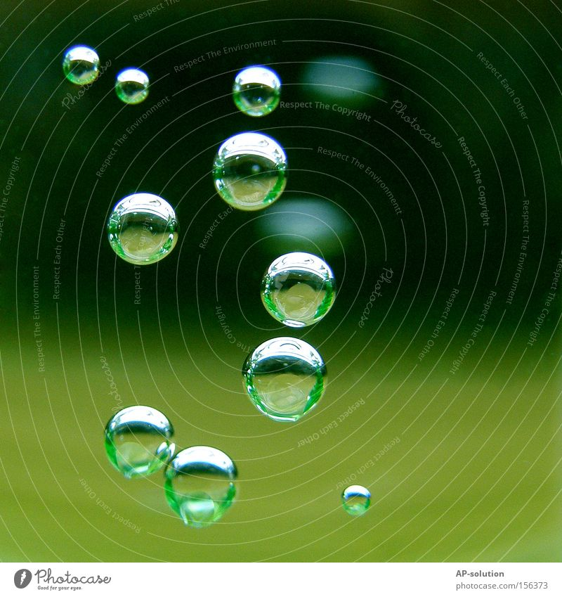 Green Water Calm Cold Fresh Drops of water Wet Round Clarity Concentrate Refreshment Macro (Extreme close-up) Bubble Thirst Thirst-quencher Air bubble