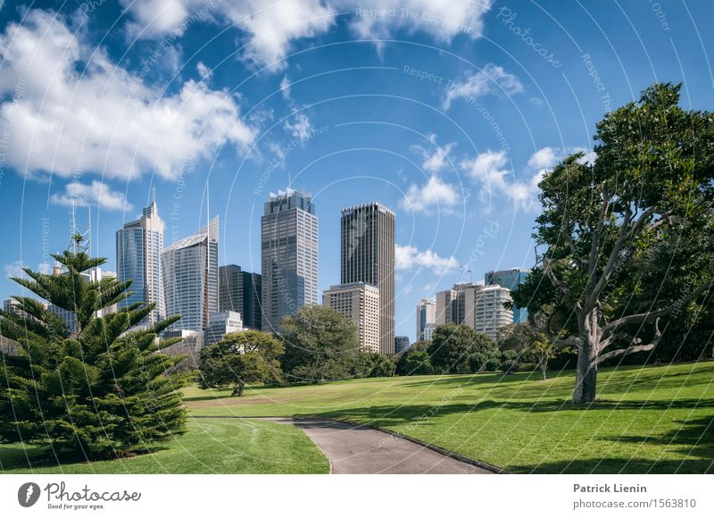 Sydney Vacation & Travel Summer Garden Business Sky Clouds Australia Town Downtown Skyline Populated High-rise Bank building Park Places Manmade structures