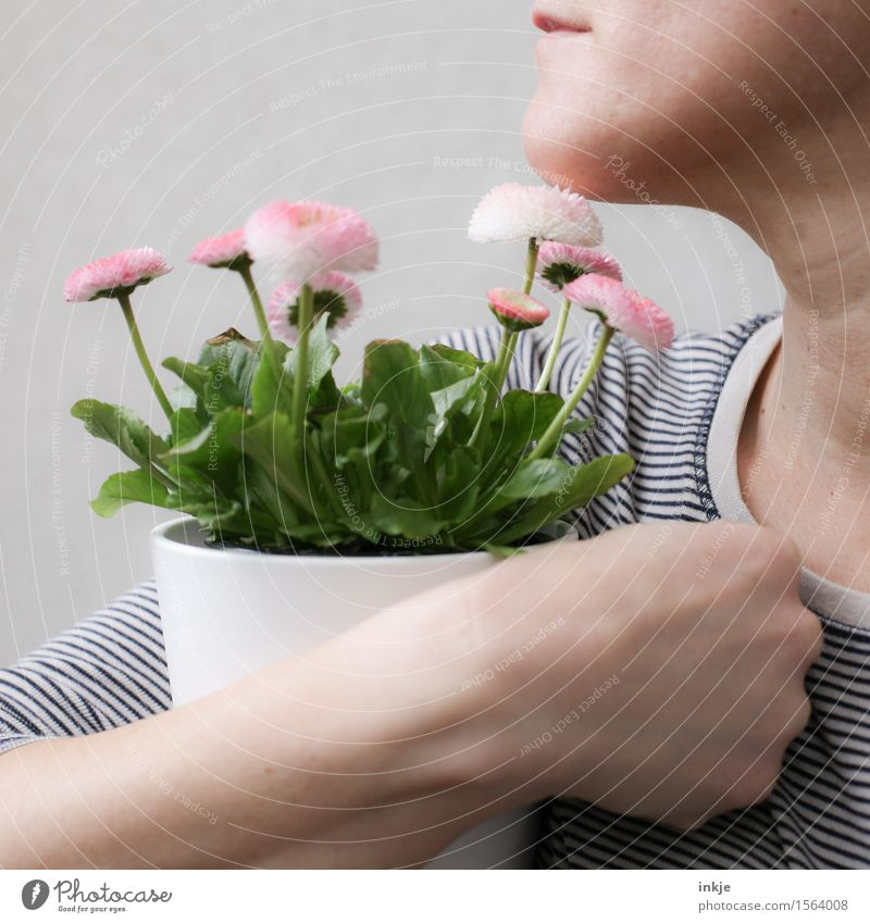Flowerpot in the arm for Finti. Lifestyle Style Beautiful Leisure and hobbies Woman Adults Face Hand 1 Human being Plant Spring Pot plant Spring flower Bouquet