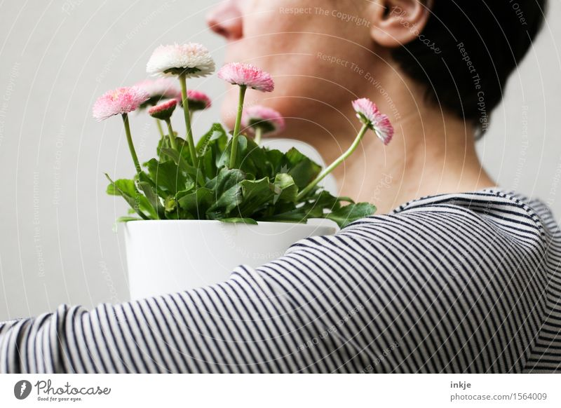 Human being Woman Beautiful Flower Adults Life Emotions Spring Style Lifestyle Small Head Pink Decoration Arm Blossoming