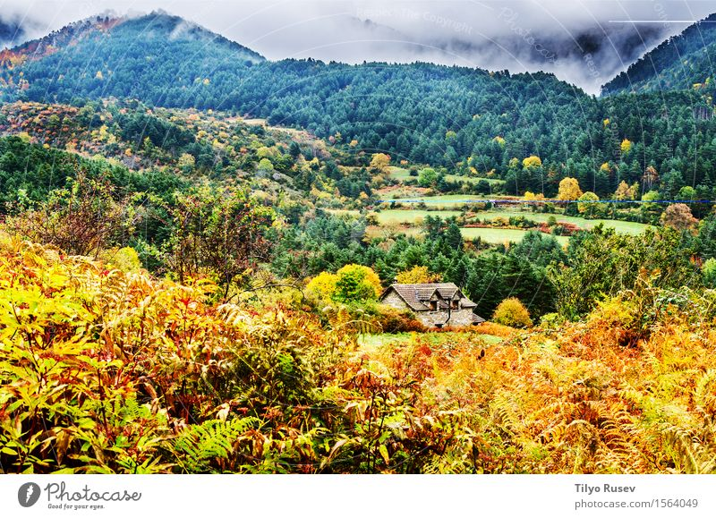 Autumn in the Pyrenees Sky Nature Vacation & Travel Plant Blue Colour Beautiful Green White Tree Landscape Clouds Leaf Forest Mountain Environment