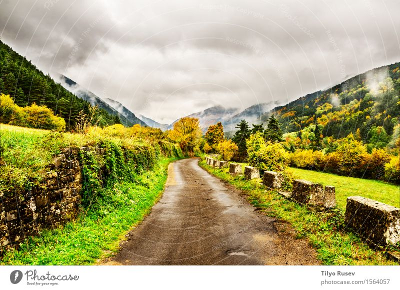 Autumn in the Pyrenees Sky Nature Vacation & Travel Plant Blue Colour Beautiful Green White Tree Landscape Red Clouds Leaf Forest Mountain
