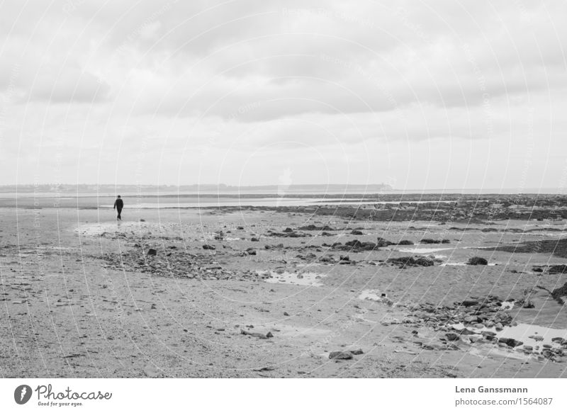 Lonely figure on the beach in North England Masculine Man Adults 1 Human being 18 - 30 years Youth (Young adults) Environment Nature Sand Water Sky Clouds Coast