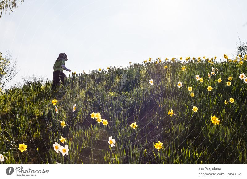 Nature Vacation & Travel Plant Flower Landscape Animal Joy Mountain Environment Love Emotions Spring Meadow Berlin Garden Freedom