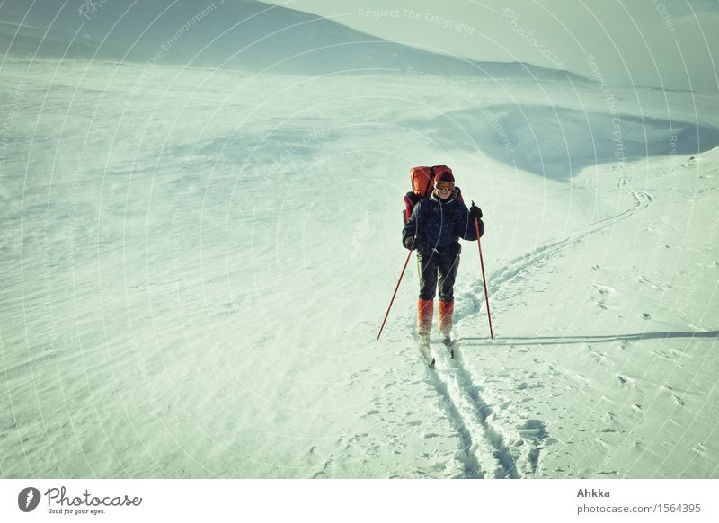 Ski hiker on adventure in arctic winter landscape Adventure Expedition Winter vacation Human being Feminine Young woman Youth (Young adults) Life 1 Nature