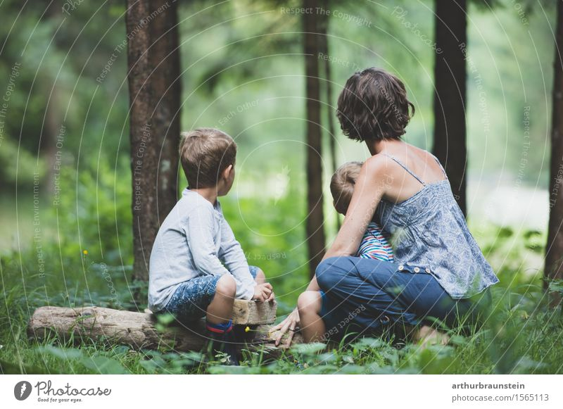 Young family observed in forest Leisure and hobbies Tourism Trip Camping Summer Parenting Kindergarten Human being Masculine Feminine Child Boy (child)