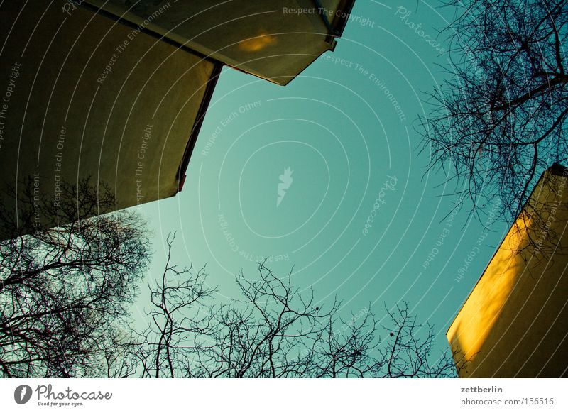Sky Tree Clouds House (Residential Structure) Window Wall (building) Wall (barrier) Branch Backyard Prefab construction Town house (City: Block of flats)