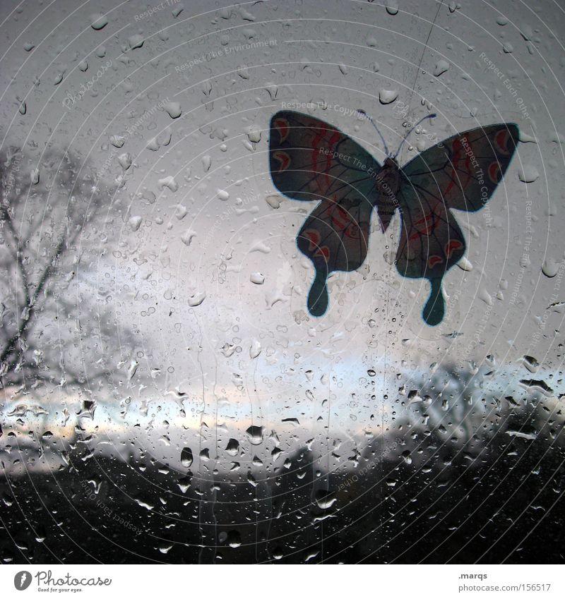 Tree Animal Dark Window Landscape Gray Sadness Rain Horizon Weather Glass Flying Wet Drops of water Bushes Kitsch