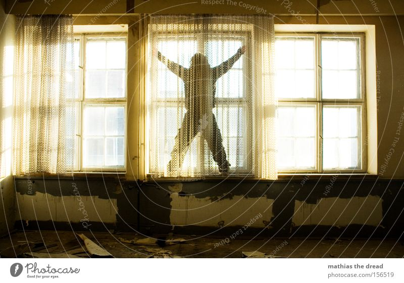 WINDOW CLEANING Window Curtain Cleaning Mystic Beautiful Esthetic Freedom Bright X-Men Stand Geometry Structures and shapes Line Shadow Room Derelict Man