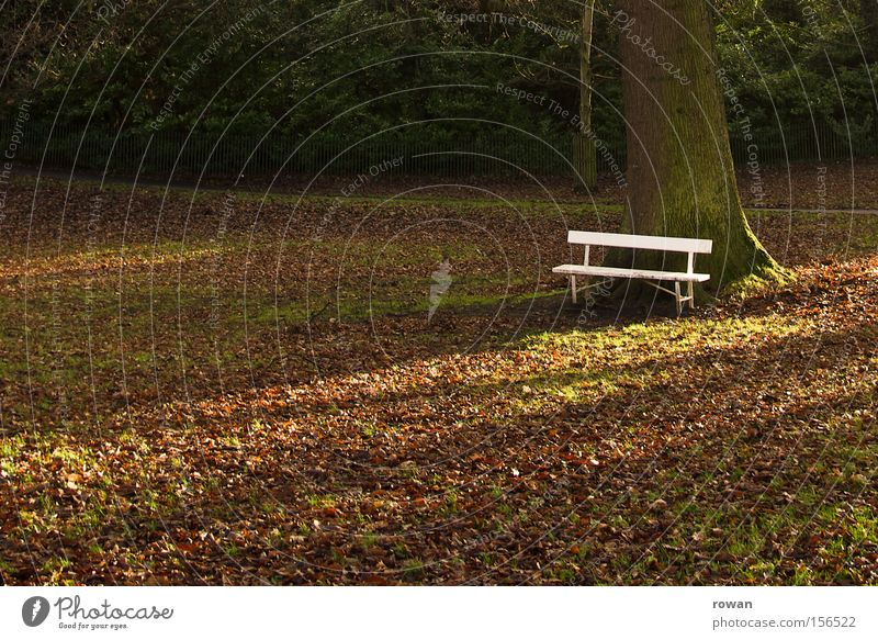 Calm Leaf Relaxation Autumn Garden Park Break Bench Stagnating Park bench Stop short