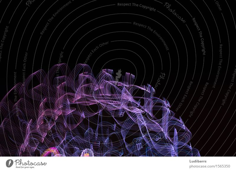 Abstract purple and blue flowing lights Joy Exceptional Happy Bright Blue Black Colour Colour Intensity Curls Lighting movement mystical swirls Consistency