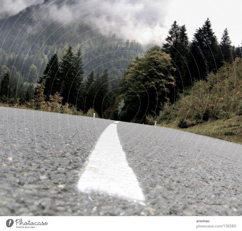 Vacation & Travel Clouds Street Forest Autumn Mountain Landscape Line Transport Driving Asphalt Traffic infrastructure Austria