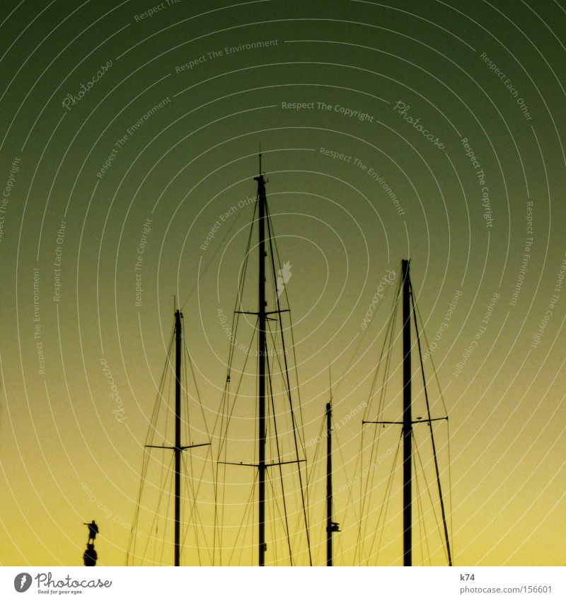Watercraft Might Statue Americas Navigation Sail Barcelona Road marking Indicate Seaman Fleet Columbus Liar