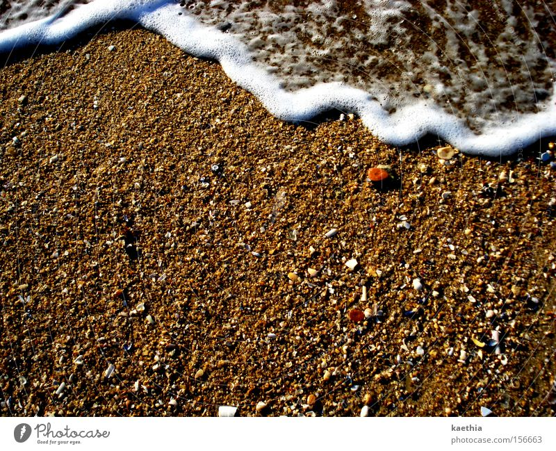 ...and gone again! Beach Ocean Waves Sand Water Coast Movement Foam Bubbling Hissing Summer Spain Travel photography Mussel Health Spa Beach vacation Brown