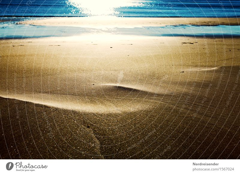 Vacation & Travel Blue Summer Water Sun Ocean Beach Background picture Sand Glittering Gold Esthetic Island Beautiful weather Friendliness Elements