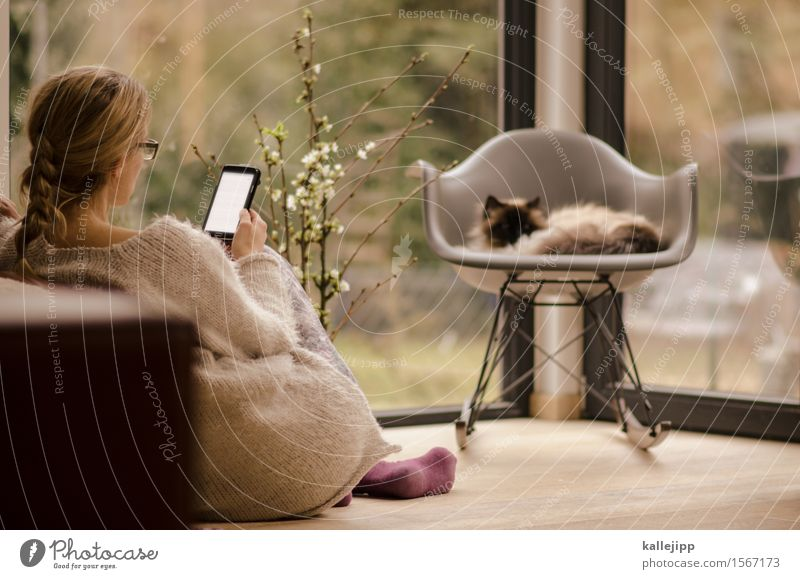 Cat Human being Woman House (Residential Structure) Animal Adults Life Feminine Style Lifestyle Work and employment Design Flat (apartment) Living or residing Elegant Technology