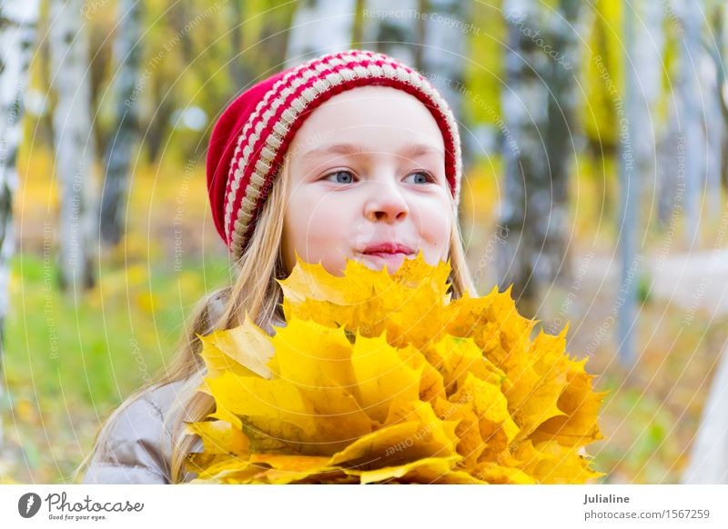 Girl with bouquet from sheets in autumn Human being Woman Child Plant White Red Leaf Adults Autumn Blonde Infancy Cute Herbs and spices 8 - 13 years European