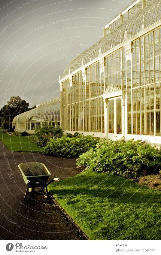 Garden Park Horticulture Botany Agriculture Organic produce Gardening Gardener Greenhouse Wheelbarrow Winter garden Botanical gardens