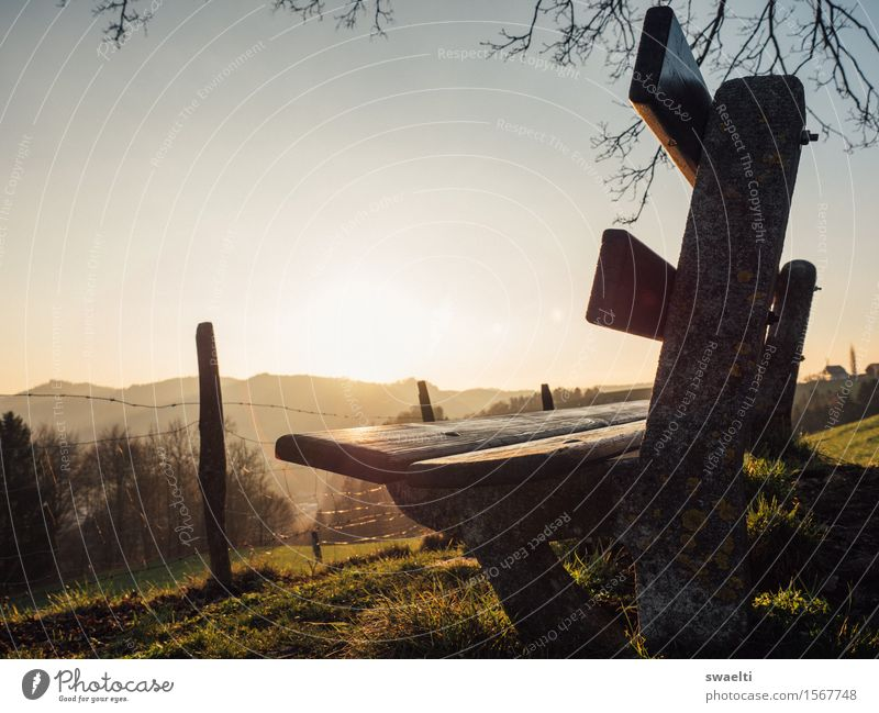 Sky Nature Vacation & Travel Sun Relaxation Landscape Yellow Warmth Autumn Spring Freedom Brown Moody Dream Field Hiking