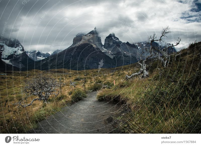 Torres del Paine Clouds Wind Mountain Torrs del Paine Threat Dark Lanes & trails Torres del Paine NP Patagonia Change in the weather Deserted