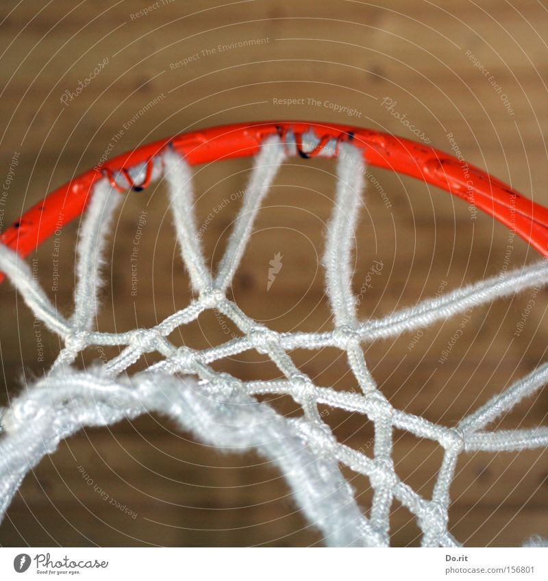 direct hits Colour photo Interior shot Copy Space top Leisure and hobbies Playing Sports Ball sports Rope Net Throw Large White Basketball basket Ceiling Orange