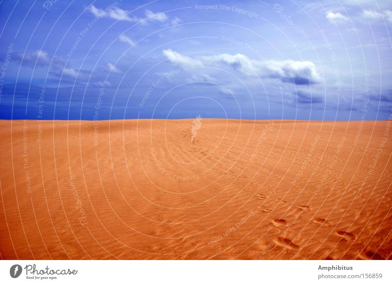 Traces in the sand Desert Sand Sky Tracks Clouds Loneliness Blue Yellow