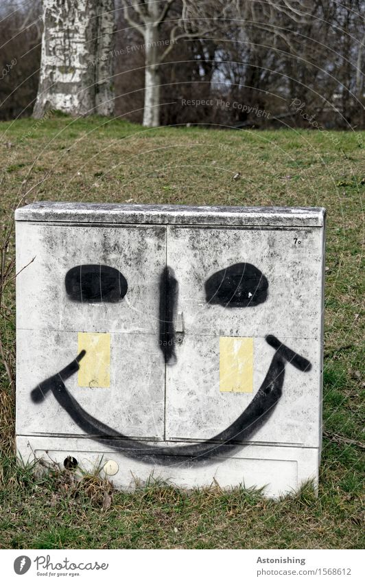 bright smile II Face Eyes Nose Mouth Environment Nature Landscape Plant Tree Grass Park Meadow Hill Vienna Smiling Laughter Illuminate Happiness Gray Green
