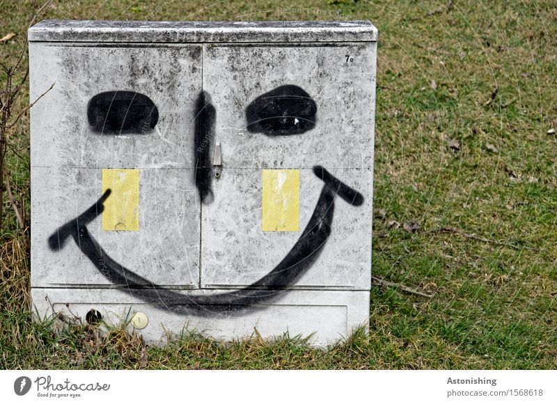 bright smile I Face Eyes Nose Mouth Art Environment Landscape Grass Meadow Vienna Smiling Laughter Illuminate Happiness Gray Green Joy Happy Contentment