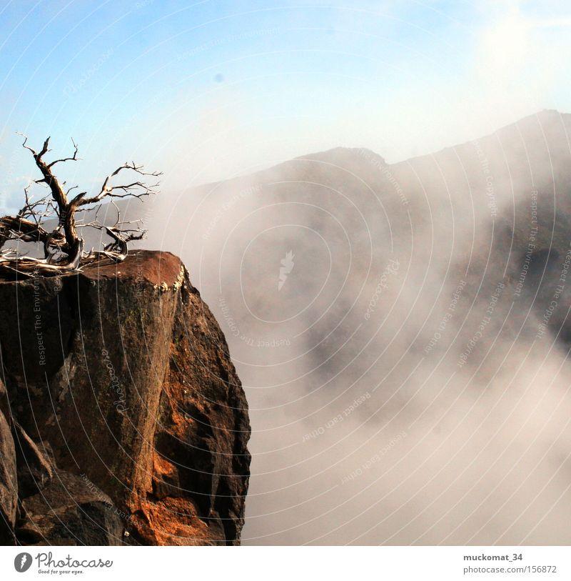 Sky Sun Mountain Wood Stone Rock Fog Earth Branch Mountaineering Blue sky Volcano Steam Mountain range Climbing