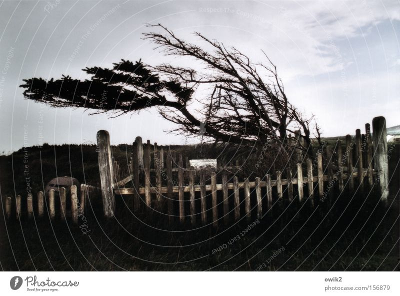 Sky Vacation & Travel Clouds Far-off places Sadness Freedom Weather Tourism Air Wind Trip Transience Tilt Historic Grief Fence