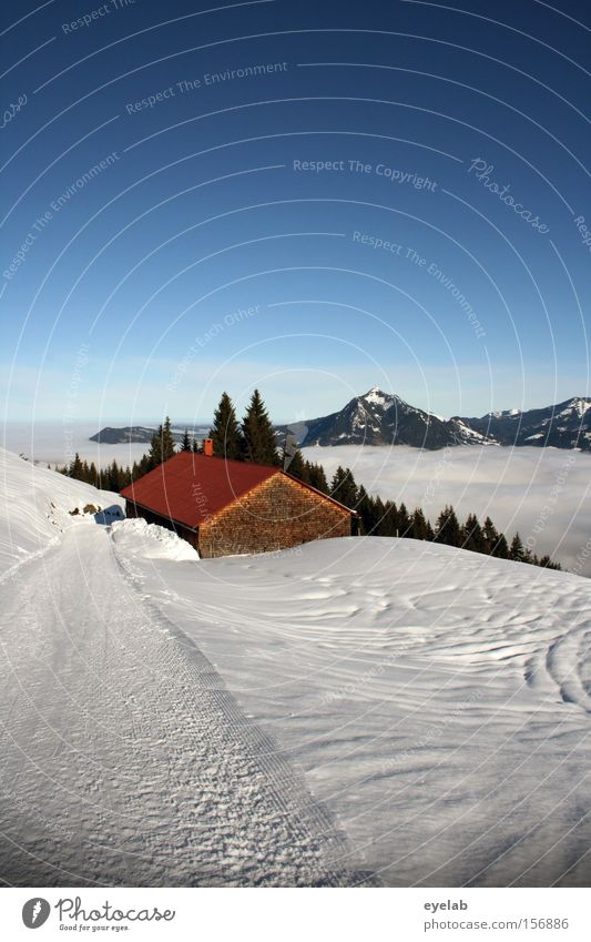 hut magic Mountain Forest Tree Sky Winter Alpine hut Wood Lanes & trails Snow Footpath Clouds Fog Valley Hut