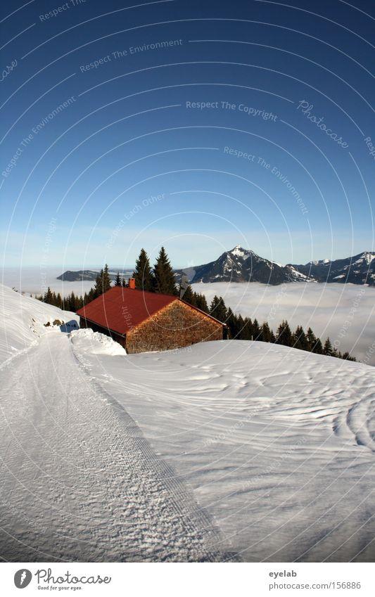 Sky Tree Winter Clouds Forest Snow Mountain Wood Lanes & trails Fog Hut Footpath Valley Alpine hut