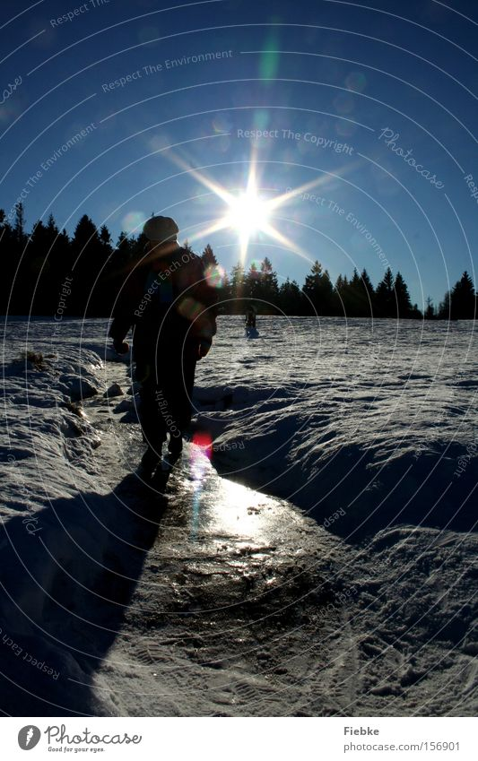Human being Woman Sky Nature Tree Sun Joy Winter Landscape Snow Ice Frost Tracks Harz Flake Harz