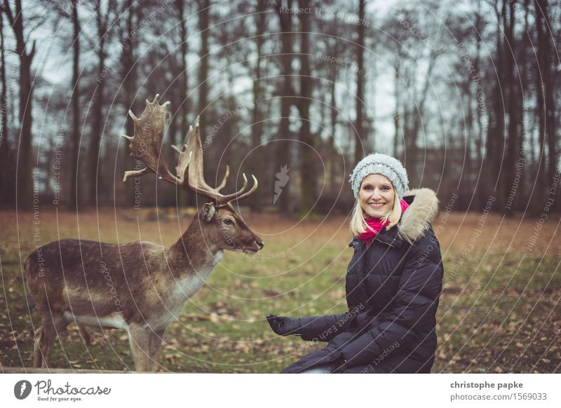 all free in the antlers? Young woman Youth (Young adults) Woman Adults 1 Human being 18 - 30 years Nature Autumn Tree Park Forest Coat Cap Blonde Animal