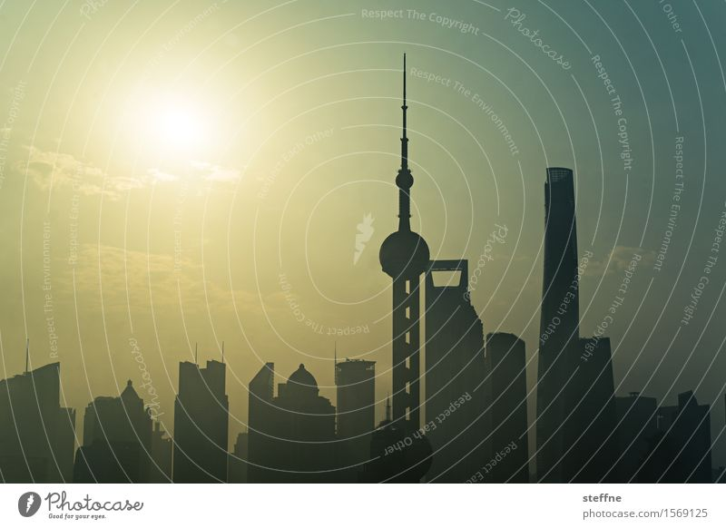 silhouette Sky Sun Sunlight High-rise Exceptional Town Shanghai China Environmental pollution Smog Colour photo Exterior shot Pattern Deserted Copy Space top