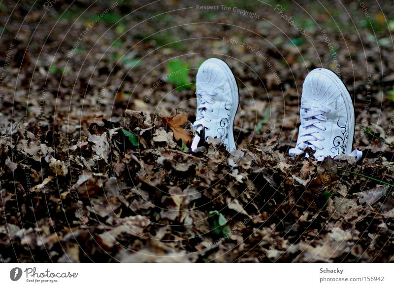 solo run Footwear Leaf Hide Fear Escape Freedom Loneliness To go for a walk Autumn Safe haven Forget Longing