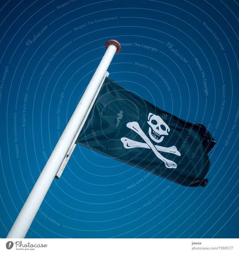 in spite of oneself Sky Wind Flag Threat Retro Blue Black White Bizarre Mysterious Crisis Protest Revolt Argument Change Death's head pirate flag Pirate Resist