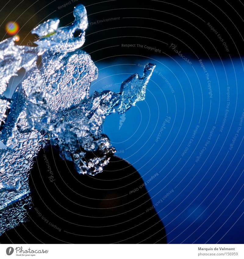 Water Winter Cold Ice Bizarre Crystal structure