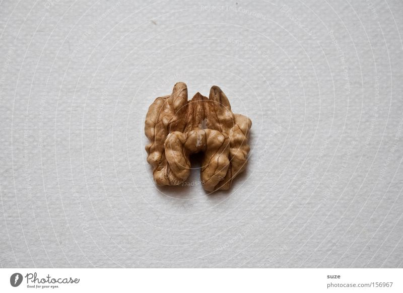 cerebrum Food Nutrition Organic produce Vegetarian diet Diet Fasting Sign Simple Healthy Small Delicious Dry Idea Walnut Funny Comical Inspiration Walnut kernel