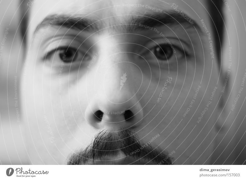Eyes Man Style Fear Nose Portrait photograph Panic Moustache
